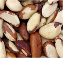 Source of selenium – brazilian nut